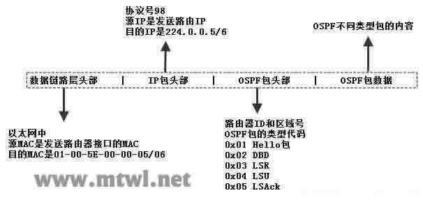 CCNA图文-16-OSPF协议详解